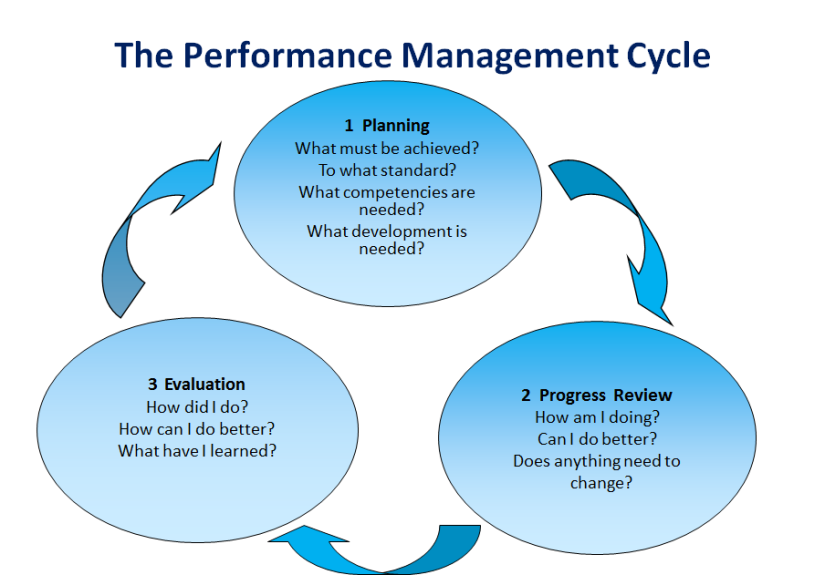 Performance-driven Organisation